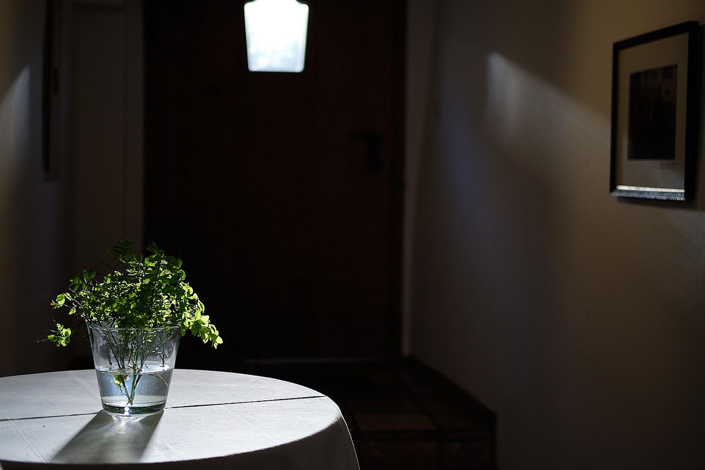 Gidibauer Bauerhof Gasthaus, guest house in Hauzenberg, light beam reflected