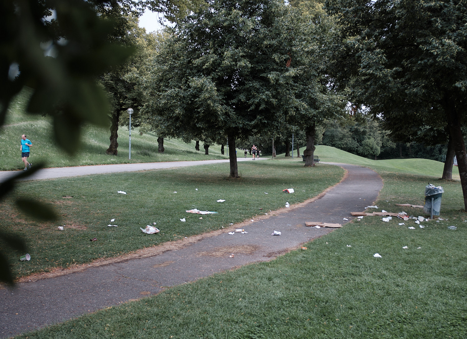 bruises of the park