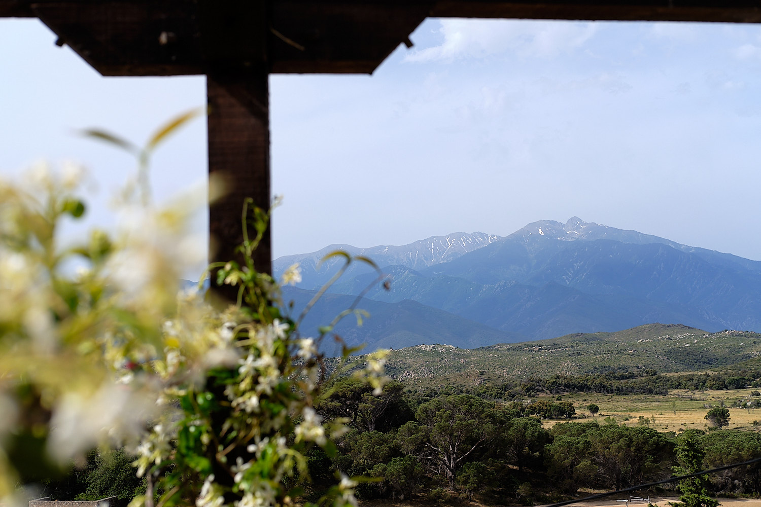 View of the Canigou, Montalba-le-Chateau, Languedoc