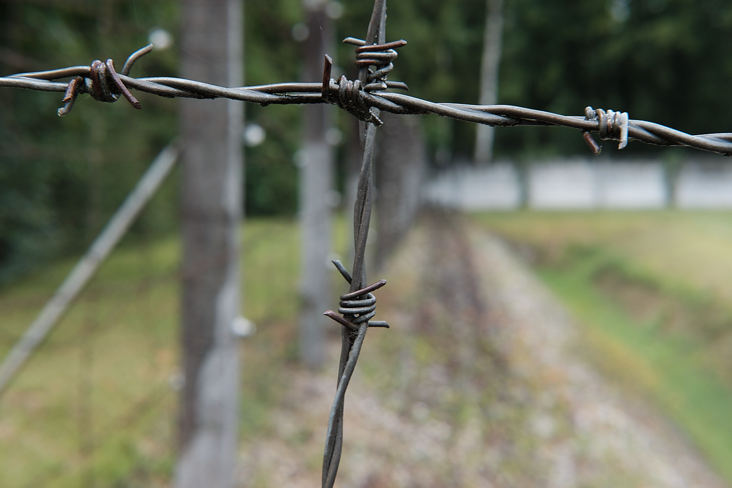 Historical site of the concentration camp of Dachau. Guided tour