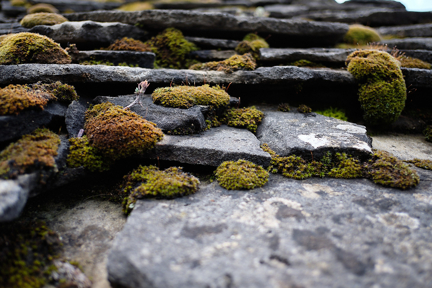 Rooftop tiles in the climb to the higher town side of Montañana, Aragón, Spain