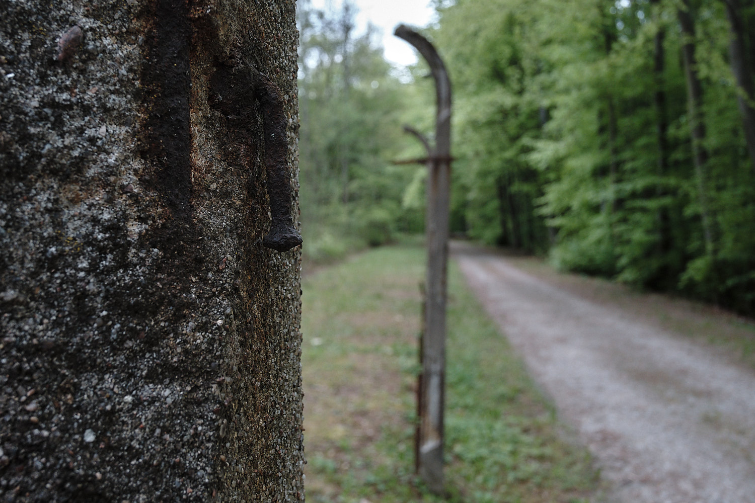 Outer original dreadful looming fence of the Memorial Site of the KZ-Buchenwald, Weimar, Germany