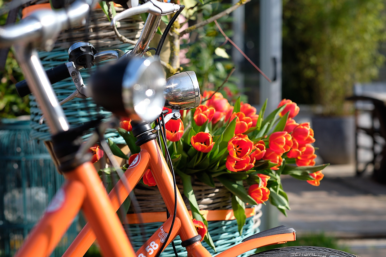 Discovering holland when the tulips blossom on an orange rental bicycle. Stop over for a piece of cake.