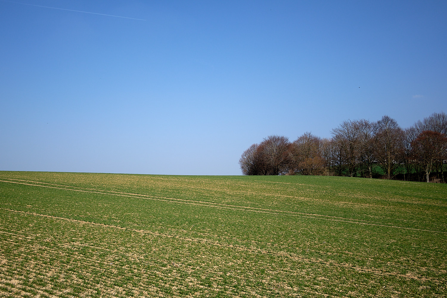 The soft hills covered of fields in south bavaria glitter with evaporation in the warming spring midday.