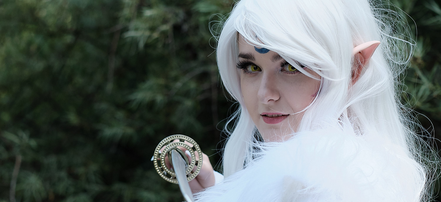 The Japan festival Munich 2019 and the cosplay meet up around, elf warrioress