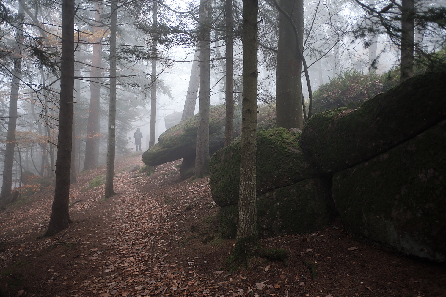 Mont Sainte-Odile and the misty Vosges in autumn