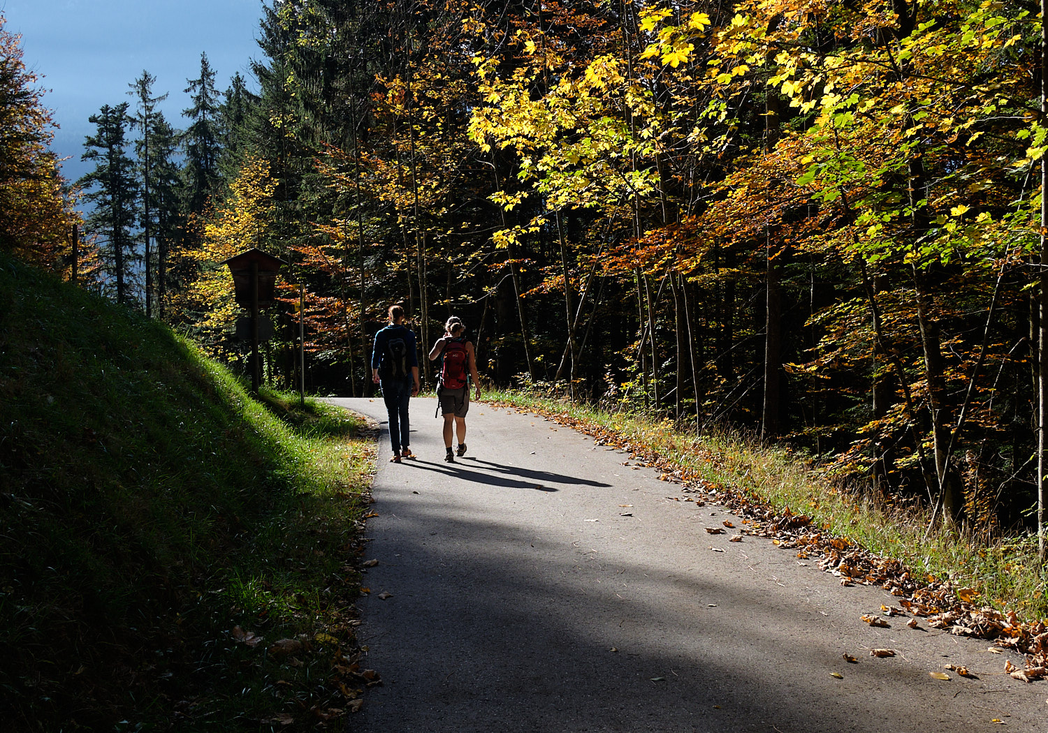 Hikers on the way to the Kneifelspitze