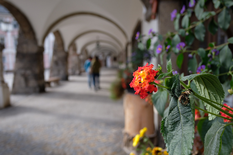 Berchtesgaden. Archway towards the centre.