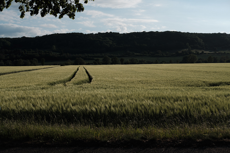 Freyburg, fields al dusk