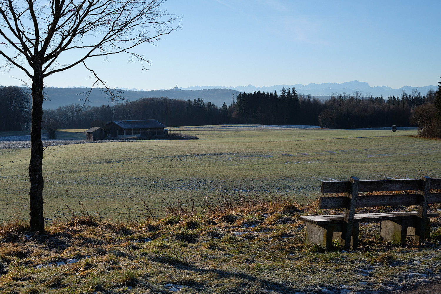 Towards Ammersee with a view to the Alps