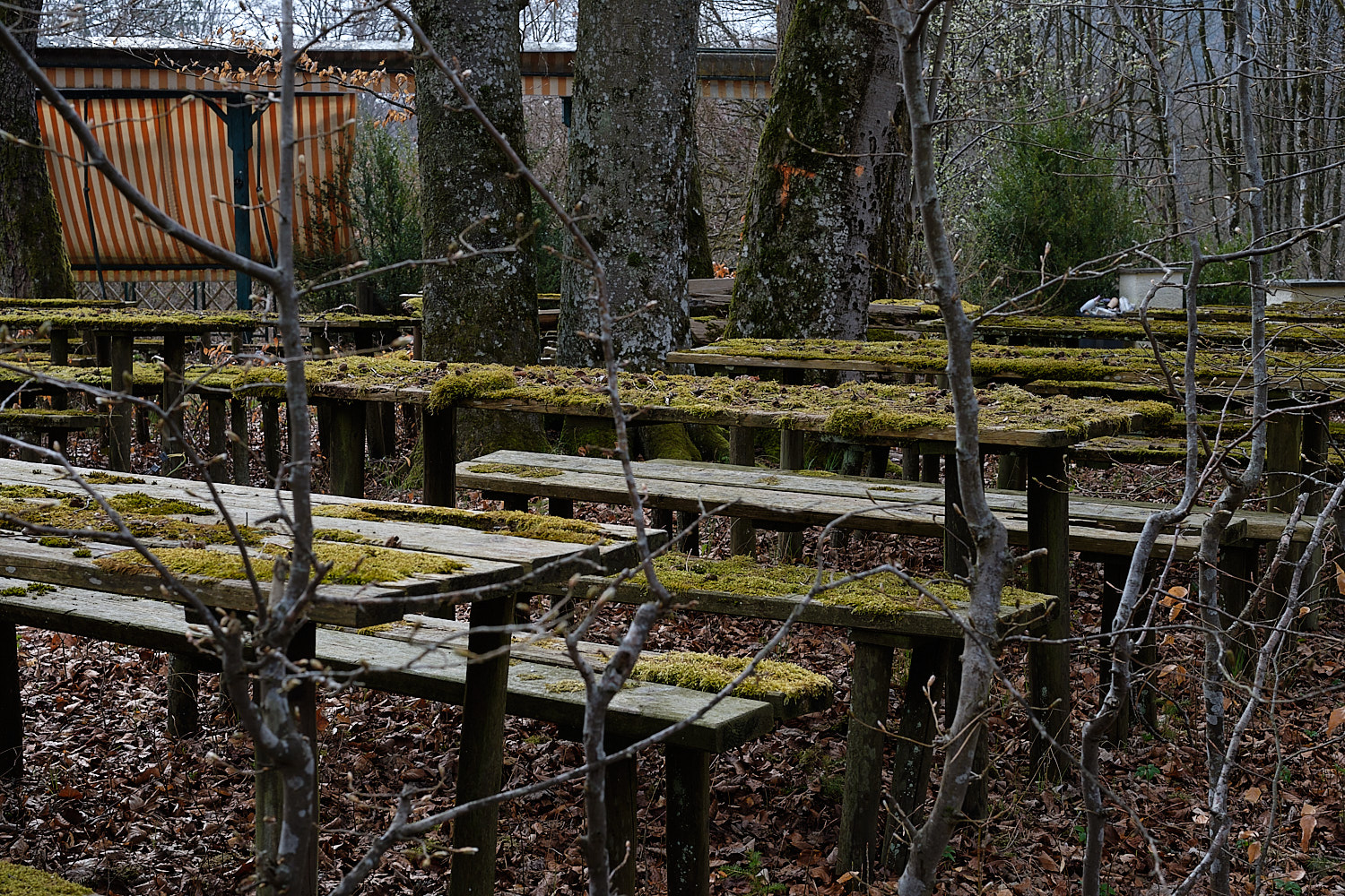 Once a Beergarden by Lautstettener Moos