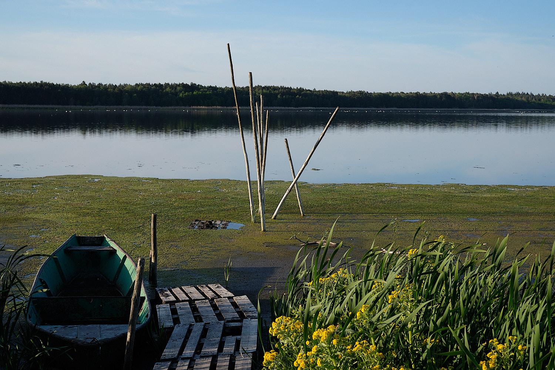 Lake in Brandenburg